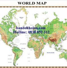 Bản đồ Thế Giới (Mẫu 27)