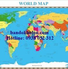 Bản đồ Thế Giới (Mẫu 29)