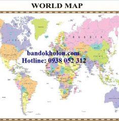 Bản đồ Thế Giới (Mẫu 31)