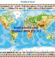 Bản đồ Thế Giới (Mẫu 38)